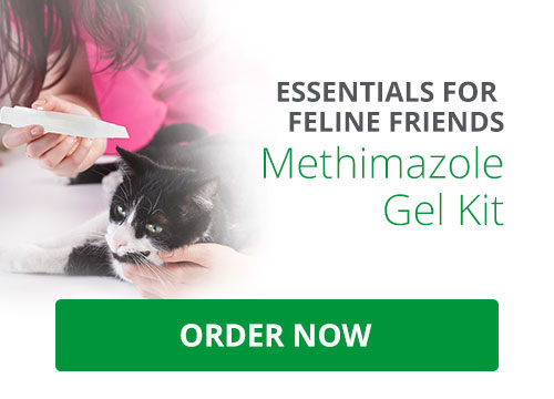 Essentials for Feline Friends: Methimazole Gel Kit. Get everything you need for this simple formulation, from preparation to final dispensing. Get yours now.